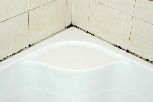 Избавляемся от плесени в ванной самостоятельно