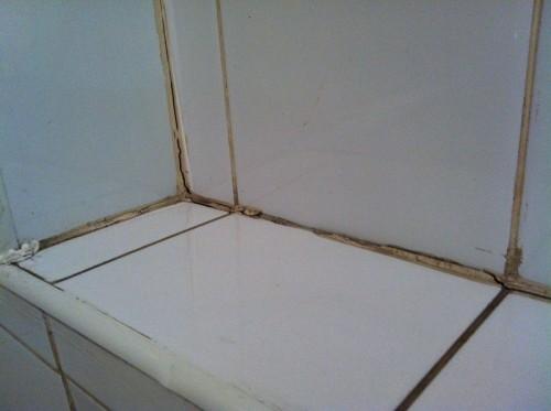 Как избавиться от плесени в швах в ванной комнате?