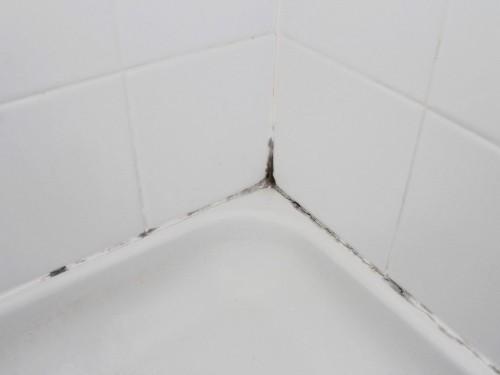 Способы уничтожения плесени в ванной